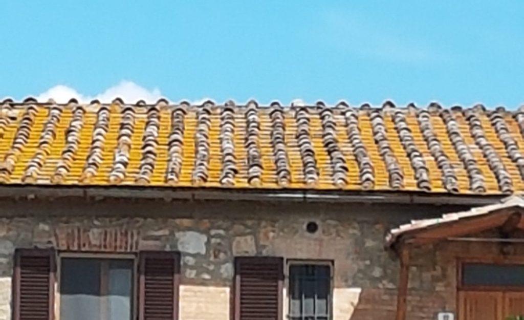 tetto non ventilato con problemi di muschio