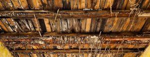 tetto legno problemi infiltrazioni